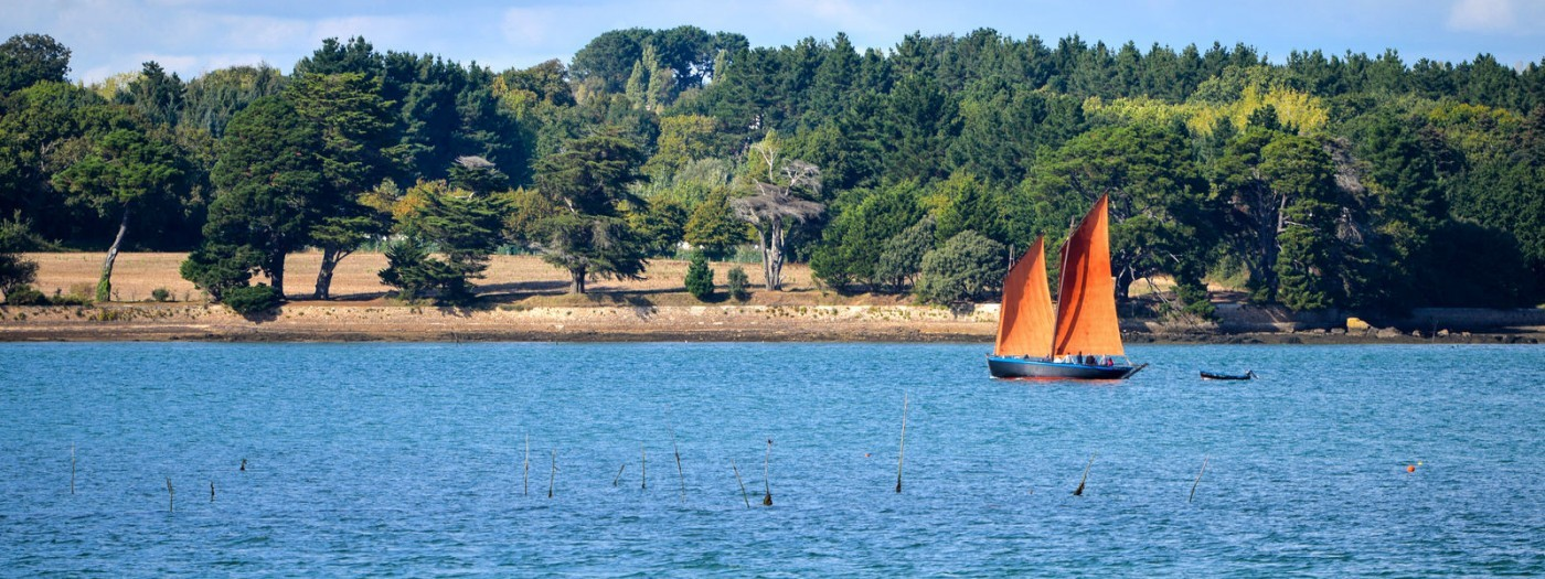 Explore the Golf du Morbihan in a campervan