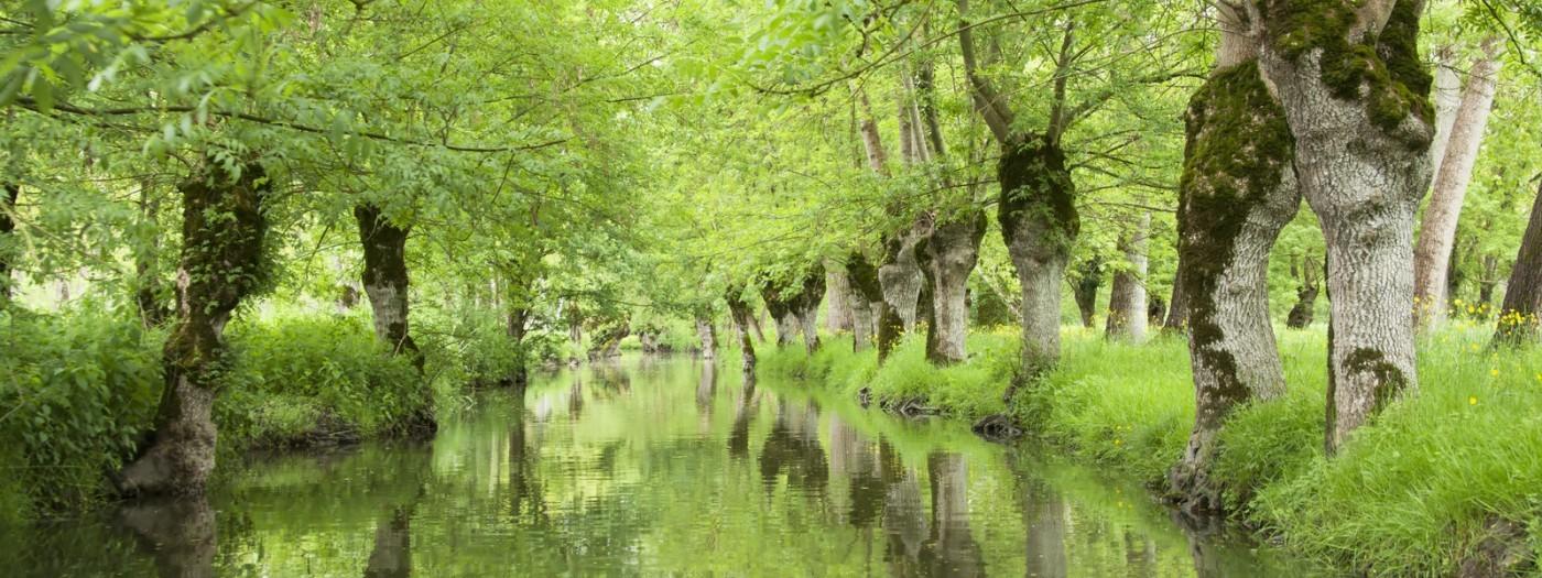 Roadrip to Vendée by campervan