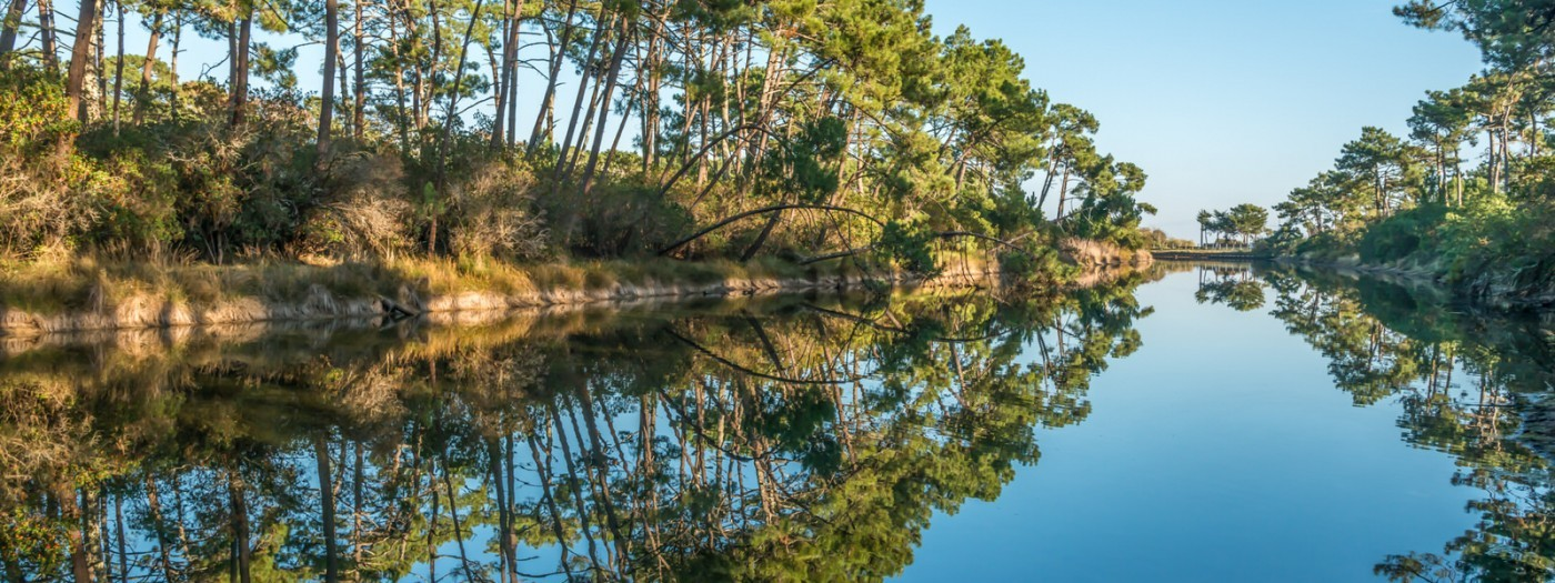 Around the Bassin d'Arcachon in a campervan