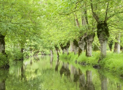 Road trip en van en Vendée