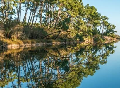 Rund um das Bassin d'Arcachon in einem Kastenwagen
